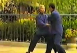 Chen Push Hands Tai Chi Video