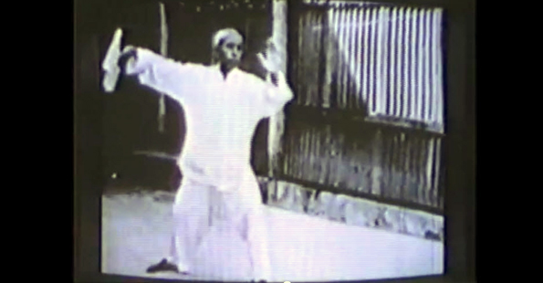 Tung Ying Chieh Performs Yang style Tai Chi Chuan