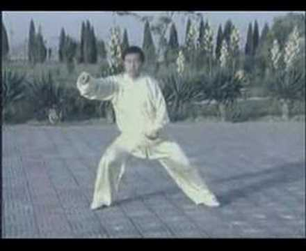 Chen Zhenglei Demonstrating Chen Family Tai Chi
