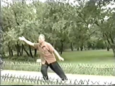 Wang Peisheng Demonstrating Northern Wu Tai Chi Chuan
