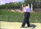 Ma Yueh Liang Performs Wu Style Fast Tai Chi