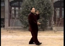 Wu (Wu Yuxiang) Tai Chi Performed by Qiao Songmao
