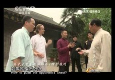 Wang Xian Demonstrates Tai Chi Applications