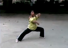 12-Year-Old Girl Performs Chen Tai Chi Chuan