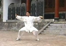 Chen Bing Performs Chen Paochui