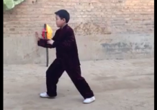 8-Year-Old Boy Performs Tung Fast Set Of Tai Chi