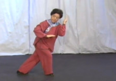 Wu Yen Hsia performs Wu Style Tai Chi Chuan Part 2