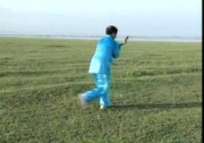 Ma Jin Long Performs Li Style Tai Chi Chuan