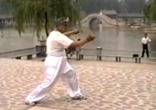 Liu Chengde Performs Yi Lu
