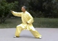 Tian Jian Hua Performs Chen Tai Chi At 88-Years-Old