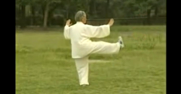 Tashi Performs the Long Form Of Yang Tai Chi – Part 2