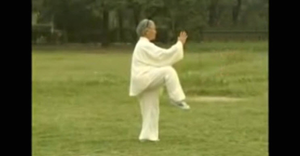 Tashi Performs the Long Form Of Yang Tai Chi – Part 3