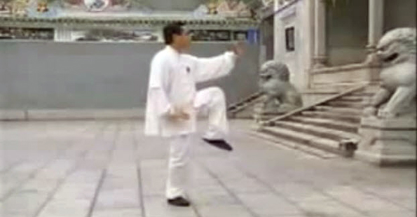 Zhao Youbin Performs Yang Tai Chi Chuan – Part 2