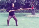 Wu Yinghua Performs Wu Family Tai Chi Spear