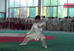 Girl Demonstrates Chen Style Tai Chi