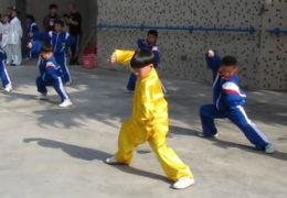 Kids Performing Chen Style Tai Chi Chuan