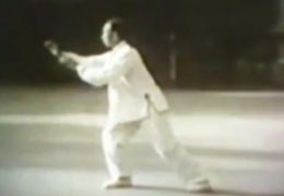 Li Bingci Performs Wu Style Tai Chi Chuan – Part 1