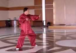 Zhang Qilin Performs Chen 83 Form Tai Chi