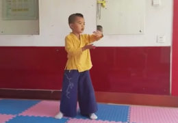 Little Boy Performs Tai Chi