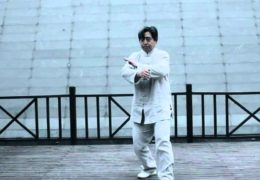 Chen Xiaoxing Performs Chen Family Tai Chi