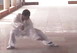 Fu Style Tai Chi Performed By Guo Jincheng